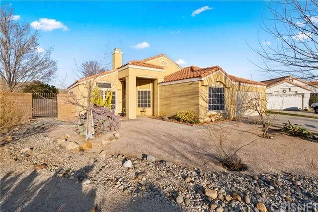 3318 Mesa Court, Rosamond, CA 93560 (#SR20036036) :: RE/MAX Parkside Real Estate