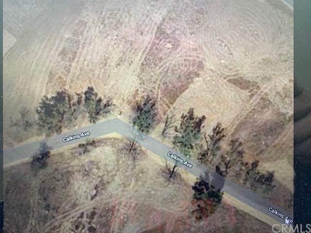 0 Vacant Land 375-312-058, Lake Elsinore, CA  (#CV20038337) :: Realty ONE Group Empire
