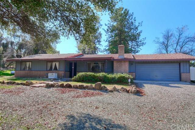 31808 Apache Road, Coarsegold, CA 93614 (#FR20038180) :: Doherty Real Estate Group