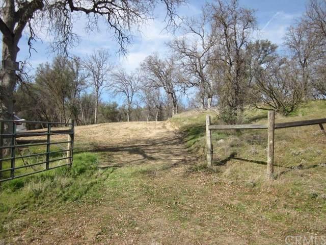 0 River Knolls Road, Coarsegold, CA  (#FR20038688) :: Allison James Estates and Homes