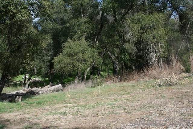 1210 Riverwood Rd, Santa Ysabel, CA 92070 (#200008818) :: Zutila, Inc.