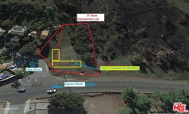 28730 Agoura Road, Agoura Hills, CA 28730 (#20556550) :: Faye Bashar & Associates