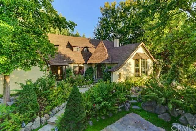 38678 Birch Creek Lane, Oak Glen, CA 92399 (#EV20037614) :: Allison James Estates and Homes
