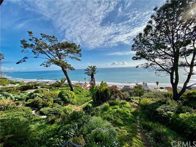 35041 Camino Capistrano, Dana Point, CA 92624 (#OC20037315) :: Allison James Estates and Homes