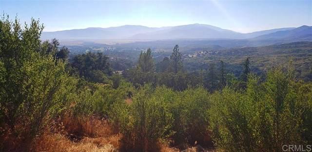 13711210 Camino Ortega, Warner Springs, CA 92086 (#200008899) :: eXp Realty of California Inc.
