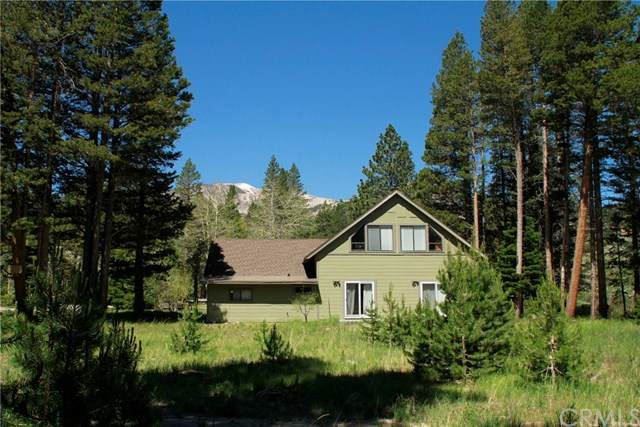 49 Meadow Court, Mammoth Lakes, CA 93546 (#LG20038923) :: Berkshire Hathaway HomeServices California Properties