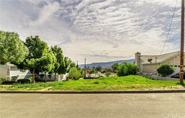 10 Mill Street, Lake Elsinore, CA  (#SW20038563) :: Brenson Realty, Inc.