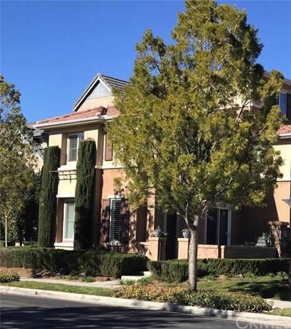 28825 S Lake Drive, Temecula, CA 92591 (#SW20039095) :: Allison James Estates and Homes