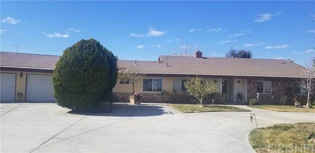 40203 11th Street W, Palmdale, CA 93551 (#SR20039301) :: Allison James Estates and Homes