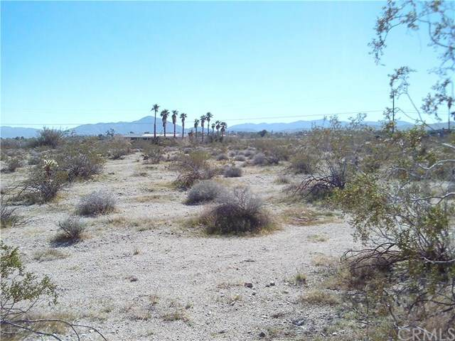 0 Indigo Lane, Borrego Springs, CA 92004 (#IV20039303) :: RE/MAX Empire Properties