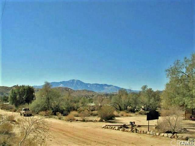 8757 Desert Willow, Morongo Valley, CA 92256 (#JT20039415) :: Sperry Residential Group