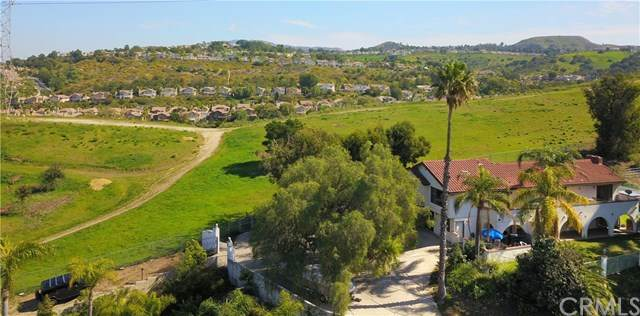 489 S Country Hill Road, Anaheim Hills, CA 92808 (#PW20015779) :: McKee Real Estate Group Powered By Realty Masters & Associates