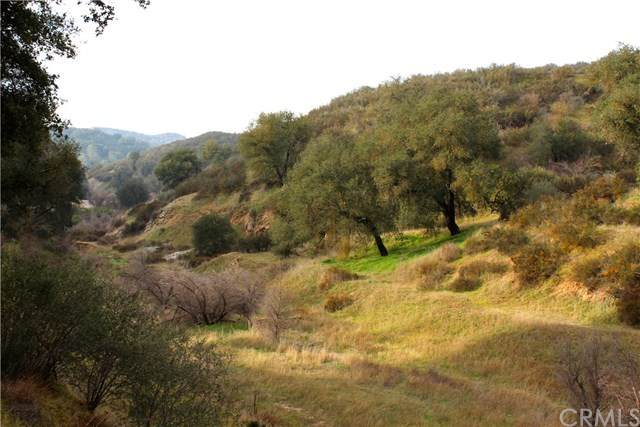 0 Calf Canyon Hwy, Santa Margarita, CA  (#PI20039846) :: RE/MAX Parkside Real Estate
