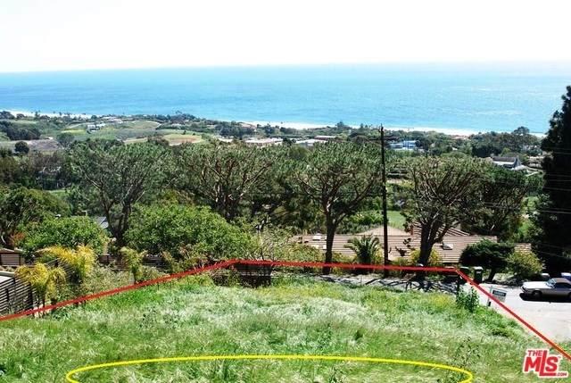 30015 Andromeda Lane, Malibu, CA 90265 (MLS #20557504) :: Desert Area Homes For Sale