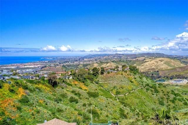 721 Avenida Columbo, San Clemente, CA  (#OC20040599) :: That Brooke Chik Real Estate