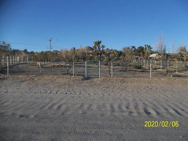 57556 Warren Way, Yucca Valley, CA 92284 (#219039589PS) :: Go Gabby