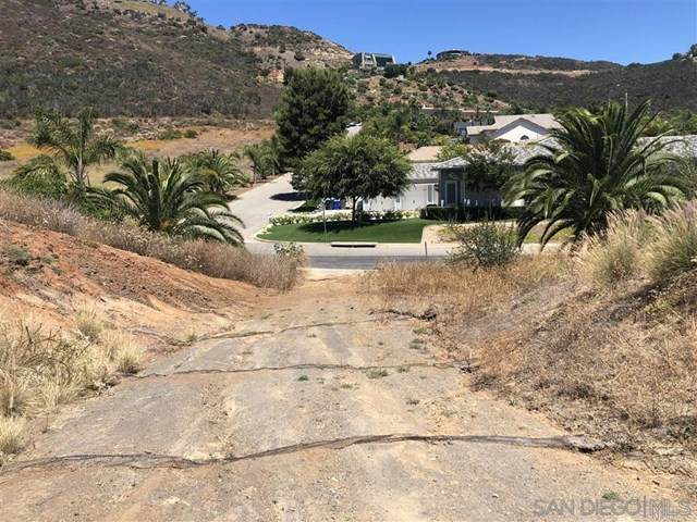 132 Luzeiro Dr, Vista, CA 92084 (#200009288) :: Rose Real Estate Group