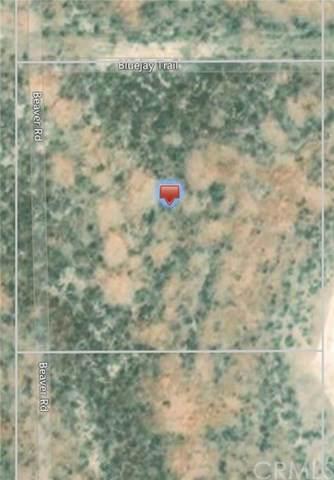 0 Blue Jay Trail, Santa Margarita, CA  (#SP20032627) :: Upstart Residential