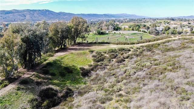 0 Paulita Rd, Temecula, CA  (#OC20040960) :: Brenson Realty, Inc.