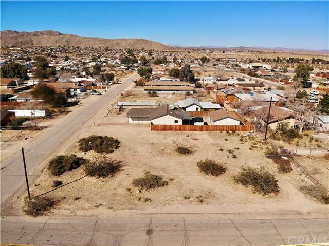 62011 Valley View Circle, Joshua Tree, CA 92252 (#JT20041044) :: The Laffins Real Estate Team