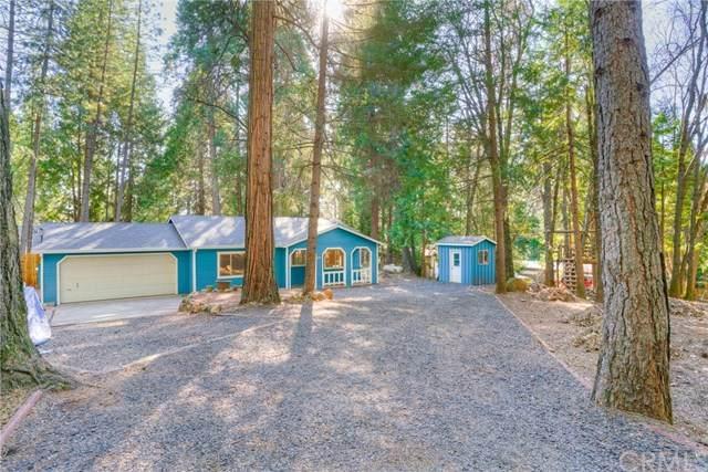 6566 Oak Park Drive, Magalia, CA 95954 (#OR20041394) :: Steele Canyon Realty