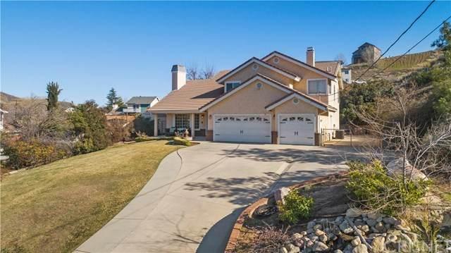 42818 Whetstone Road, Lake Hughes, CA 93532 (#SR20026391) :: Go Gabby