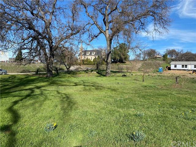 16387 Daly Street, Lower Lake, CA 95457 (#LC20041100) :: RE/MAX Innovations -The Wilson Group