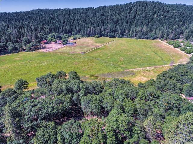 9655 Mountain Meadow Way, Kelseyville, CA 95451 (#LC20041959) :: Go Gabby