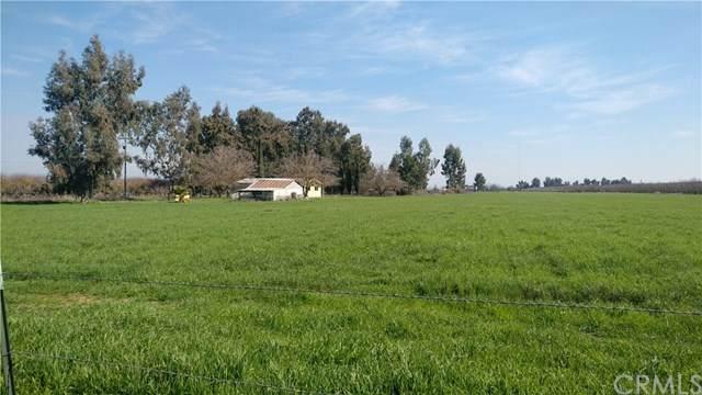 4720 Clausen Road, Le Grand, CA 95333 (#MC20042471) :: RE/MAX Parkside Real Estate