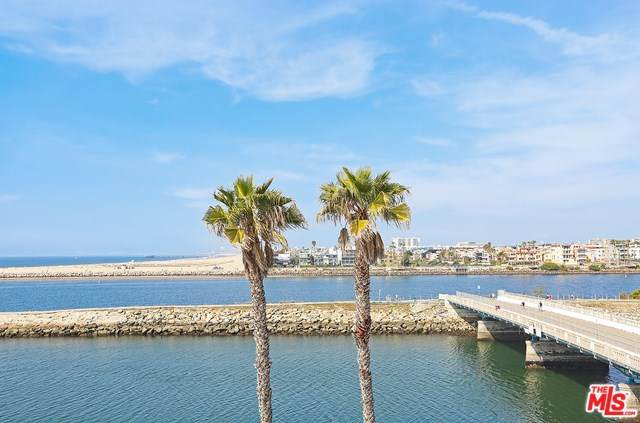 6209 Pacific Avenue #304, Venice, CA 90293 (#20558440) :: Allison James Estates and Homes