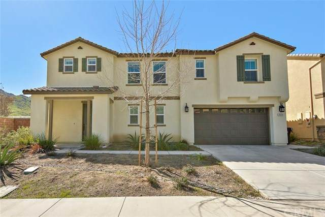 20529 Lyon Road, Riverside, CA 92507 (#CV20042703) :: Sperry Residential Group