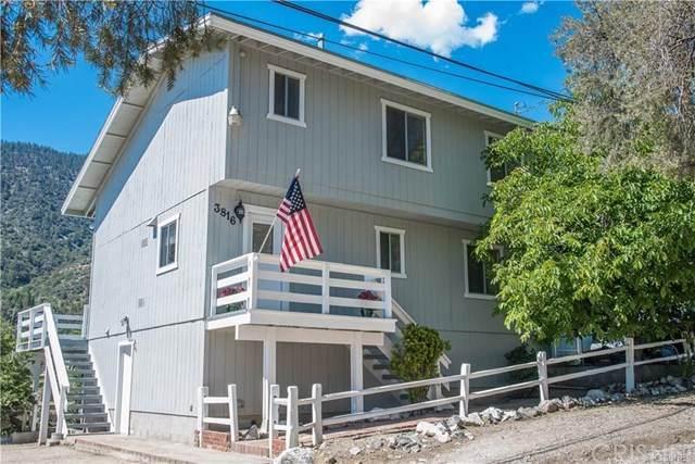 3816 Park View, Frazier Park, CA 93225 (#SR20042242) :: Allison James Estates and Homes
