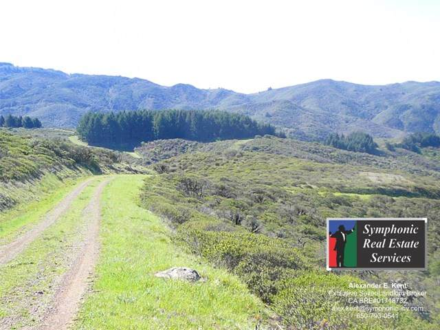 0 Weiler Ranch Road - Photo 1
