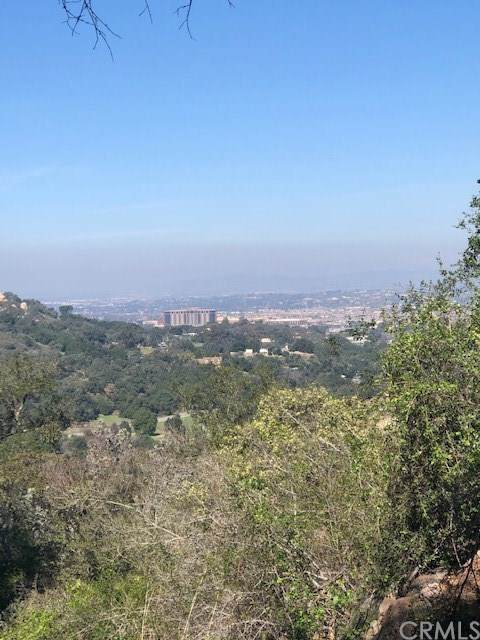 0 Rancho Heights Road, Pala, CA 92082 (#SW20042976) :: Sperry Residential Group