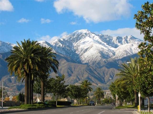 6946 Archibald Avenue, Rancho Cucamonga, CA 91701 (#WS20043161) :: Mainstreet Realtors®
