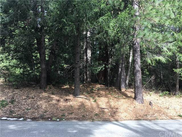 19893 Barton Hill Road, Strawberry Valley, CA 95981 (#OR20044179) :: Wendy Rich-Soto and Associates