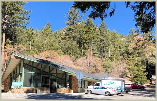 54690 Pine Crest Avenue, Idyllwild, CA 92549 (#219039912DA) :: RE/MAX Empire Properties