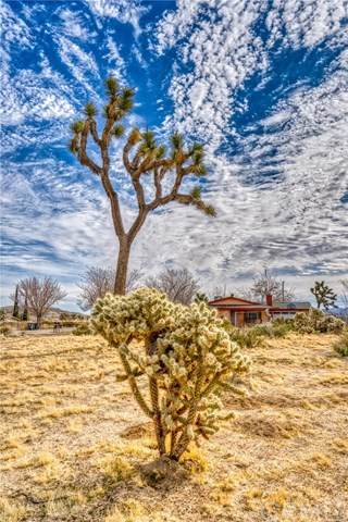 6334 Ronald Drive, Yucca Valley, CA 92284 (#JT20045521) :: RE/MAX Masters