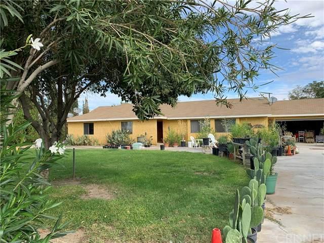 16507 E Avenue T4, Llano, CA 93544 (#SR20045740) :: Z Team OC Real Estate