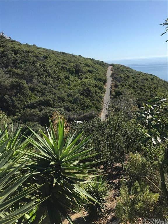 0 Oro, Laguna Beach, CA  (#LG20045820) :: Doherty Real Estate Group