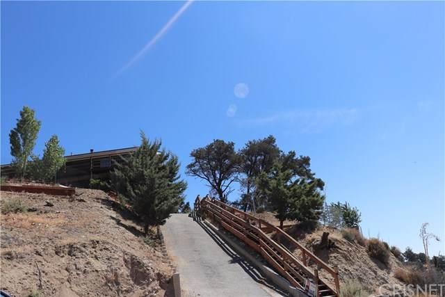 4305 Mt Pinos Way, Frazier Park, CA 93225 (#SR20048857) :: RE/MAX Parkside Real Estate
