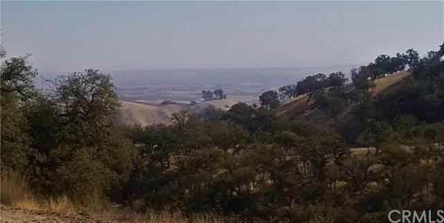 4265 Nickel Creek Road, San Miguel, CA 93451 (#SC20049621) :: Team Tami
