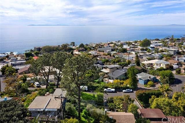 31744 Scenic Drive, Laguna Beach, CA 92651 (#LG20049730) :: Doherty Real Estate Group