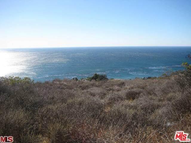 32838 Camino De Buena Ventura - Photo 1