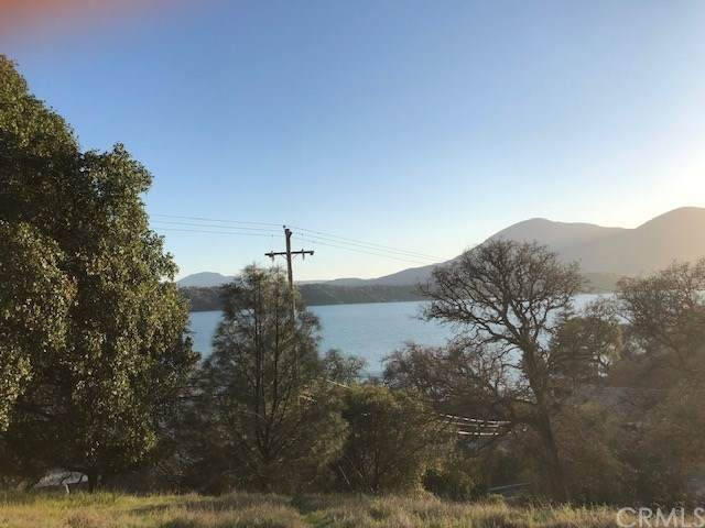 11180 Pingree Road, Clearlake Oaks, CA 95423 (#LC20050094) :: Cal American Realty