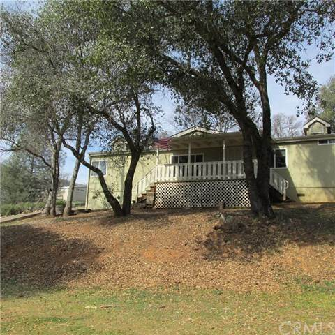 4950 Terrace View Lane, Mariposa, CA 95338 (#MP20046970) :: Z Team OC Real Estate