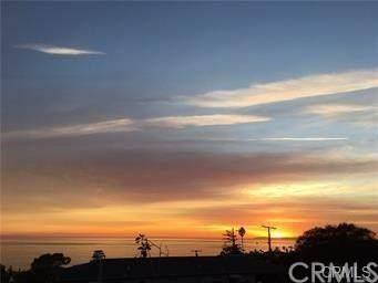 300 Heather Place, Laguna Beach, CA 92651 (#LG20050533) :: Case Realty Group
