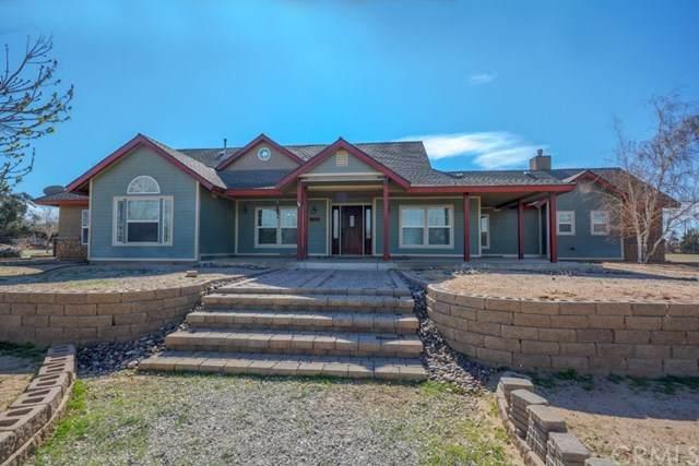 9799 Elsinore Road, Oak Hills, CA 92344 (#CV20051203) :: The Miller Group