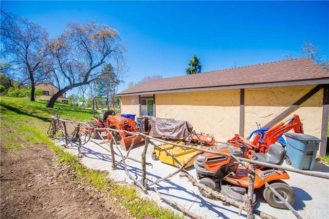 37877 Potato Canyon Road, Oak Glen, CA 92399 (#IG20051821) :: The Miller Group