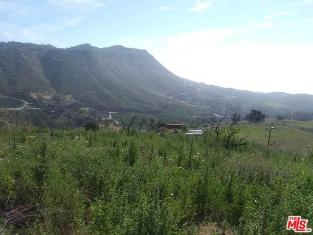 2570 Encinal Canyon Road - Photo 1
